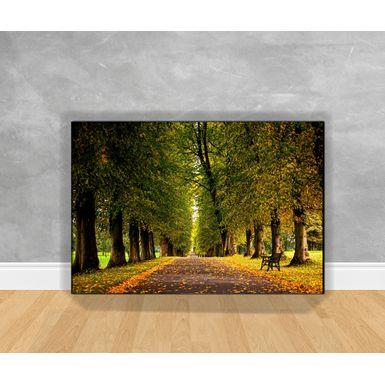 Tela-em-Canvas-Paisagem-Corredor-Florestal-Verde