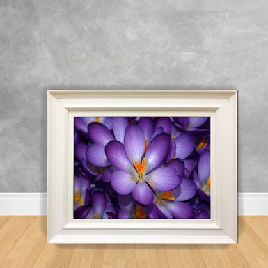 Quadro-Decorativo-Canvas-Purple2