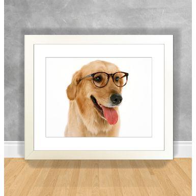 Cachorro-10-Branca