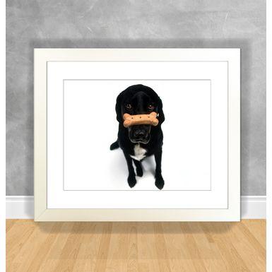 Cachorro-15-Branca