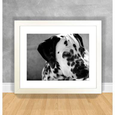 Cachorro-21-Branca