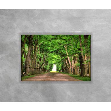 Gravura Decorativa Floresta Verde