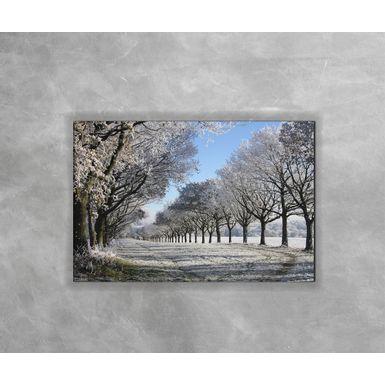 Gravura-Decorativa-Floresta-Congelada