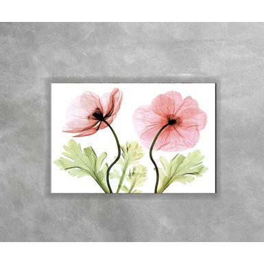 Gravura-Decorativa-RaioX-Rosa