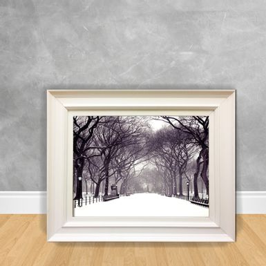 Quadro-Decorativo-Parque-Nevando