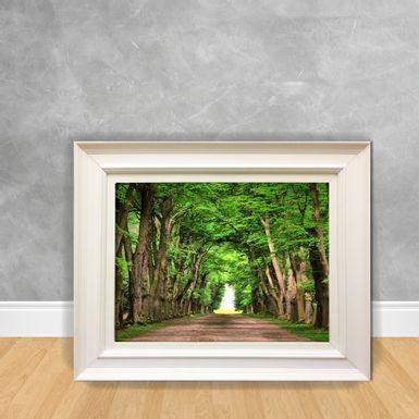 Quadro-Decorativo-Caminho-Florestado