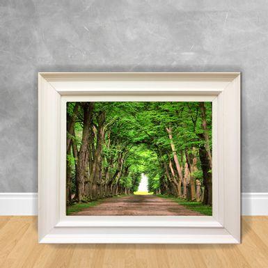 Quadro-Decorativo-Canvas-Caminho-Florestado