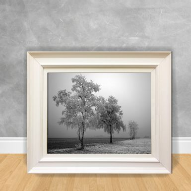 Quadro-Decorativo-Canvas-Neve-P-B