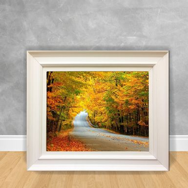 Quadro-Decorativo-Canvas-Estrada-de-Floresta
