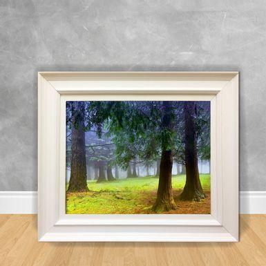 Quadro-Decorativo-Canvas-Floresta-com-Nevoeiro