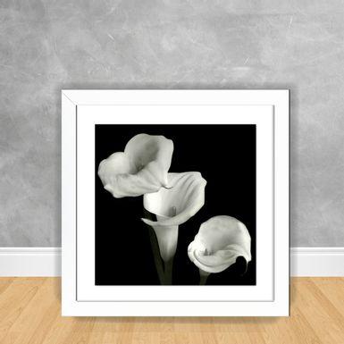 Quadro-Decorativo-Flor-PB-10