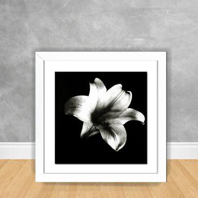 Quadro-Decorativo-Flor-PB-4