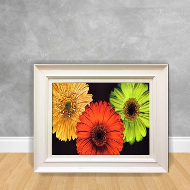 Quadro-Decorativo-Canvas-Margarida-Color