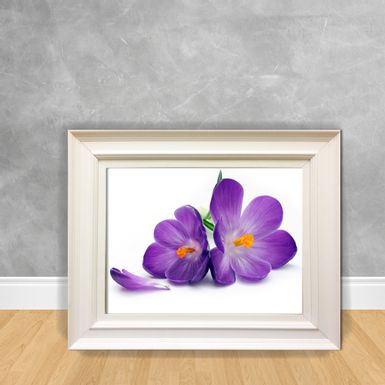 Quadro-Decorativo-Canvas-Purple1