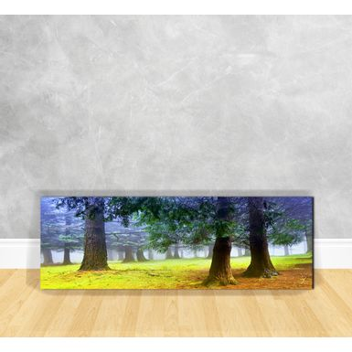 Quadro-em-Vidro---Floresta-com-Nevoeiro