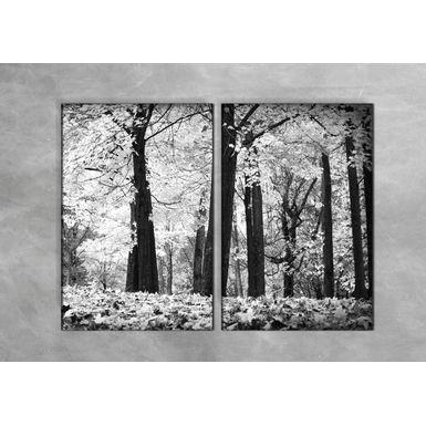 Quadro-Impressao-em-Vidro---Arvores-e-Flores-2-partes-40x60-