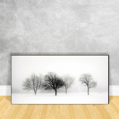 Quadro-Impressao-em-Vidro---Arvores-na-Neve-