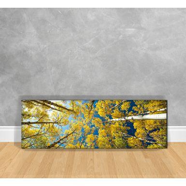 Quadro-Decorativo-Arvores-Amarelas-Vista-de-Baixo