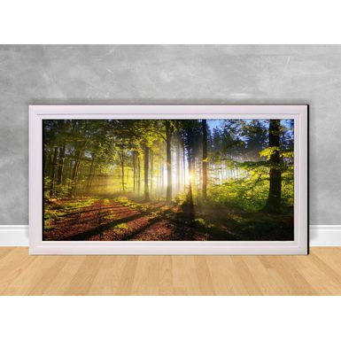 Quadro-Decorativo-Luz-do-Sol-na-Floresta